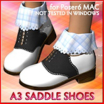 saddle-shoes-a3