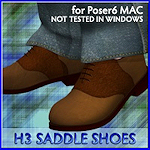 saddle-shoes-h3