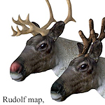 xmas-animals-reindeer