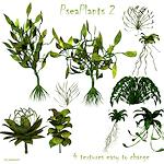 space_enviro-psea-plants-2