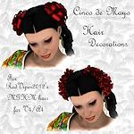 cinco_hair-cinco-de-mayo-hair-props