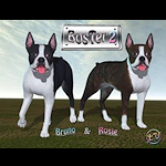 summer_animals-BosTer2