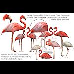 summer_animals-Flamingos