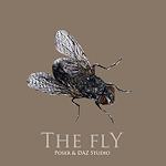 summer_animals-fly