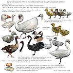 summer_animals-waterbirds