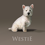 summer_animals-westie