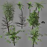 summer_nature-treepack