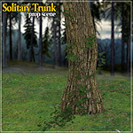 summer_nature-solitary-trunk