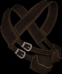 ranger-ds-2