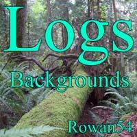 2d-logs bgs