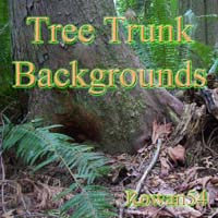2d-tree trunk bgs 1
