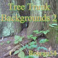 2d-tree trunk bgs 2
