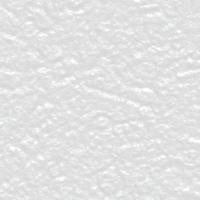 th_citrus-skin-white