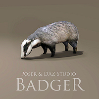 zoo_animals-Badger