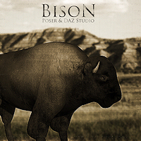 zoo_animals-Bison