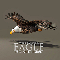 zoo_animals-Eagle