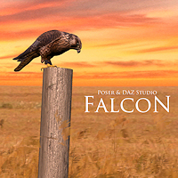 zoo_animals-Falcon