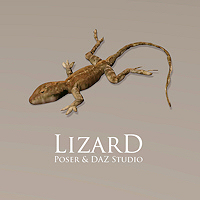 zoo_animals-Lizard
