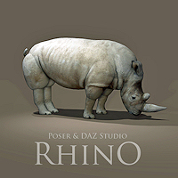zoo_animals-Rhino