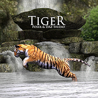 zoo_animals-Tiger