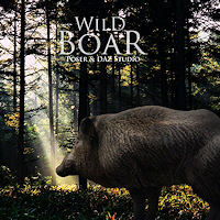zoo_animals-Wild Boar