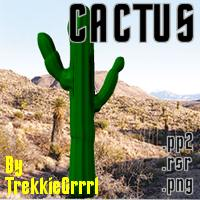 zoo_nature-cactus