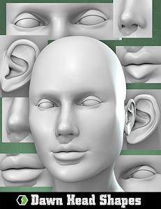 3-Morphs_Dawn-Head-Shapes