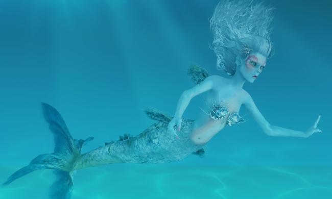 Mermaid_Coral_Small