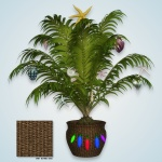 prev_tropical-potted-palm