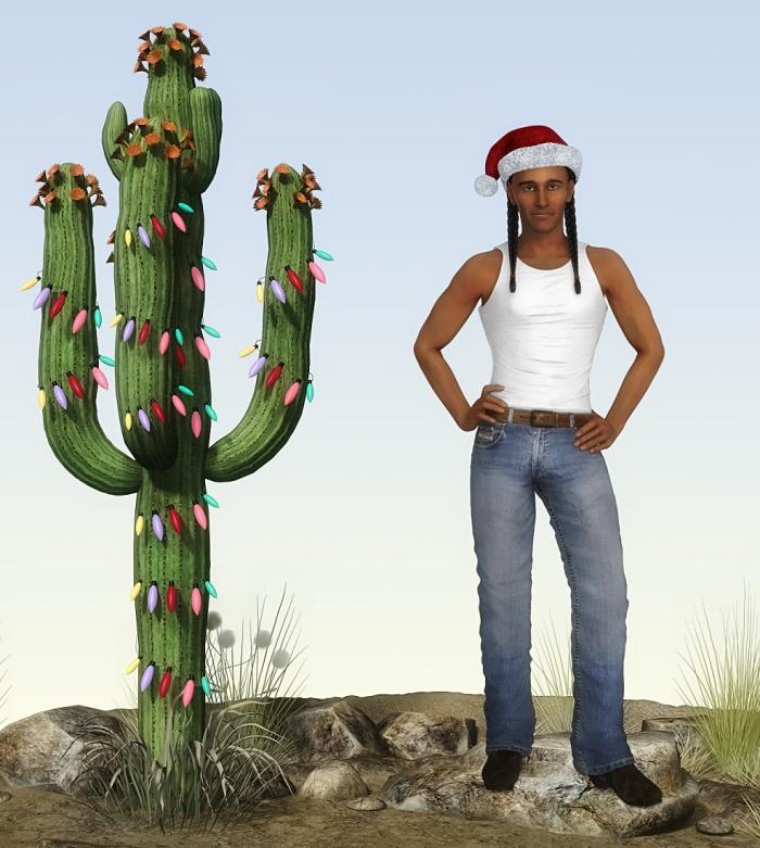 Navajo-Ho-Ho-Ho