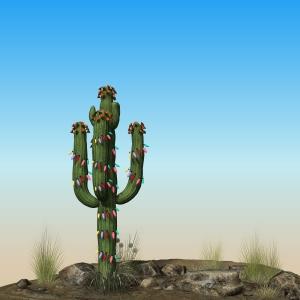 Xmas-Cactus-01A