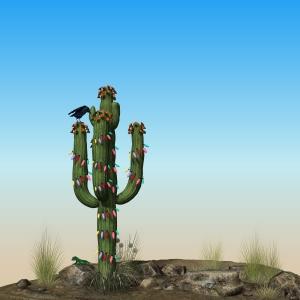 Xmas-Cactus-01B