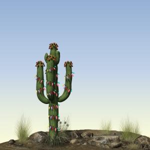 Xmas-Cactus-02A